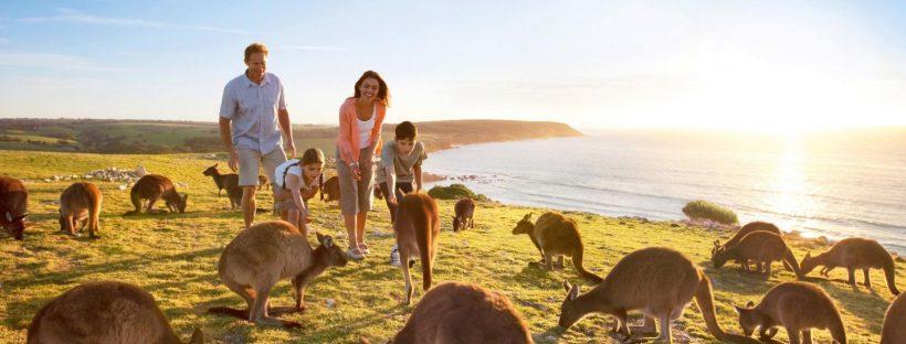 Essay Writing Help - Tourism